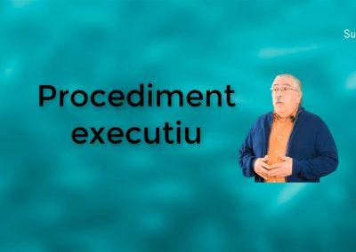 Com funciona el procediment executiu?