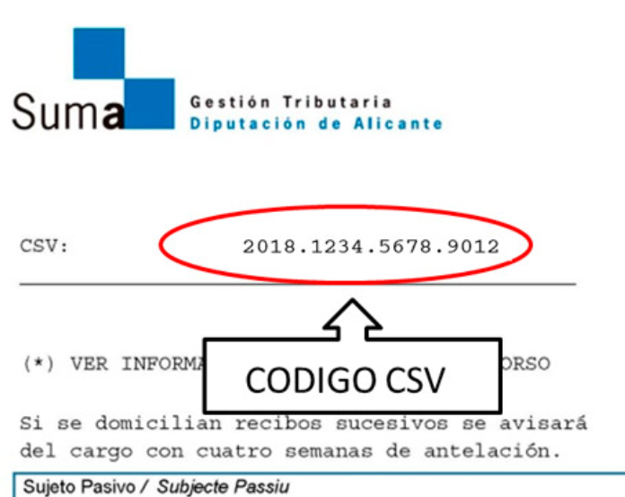 imagen de un recibo para visualizar CSV